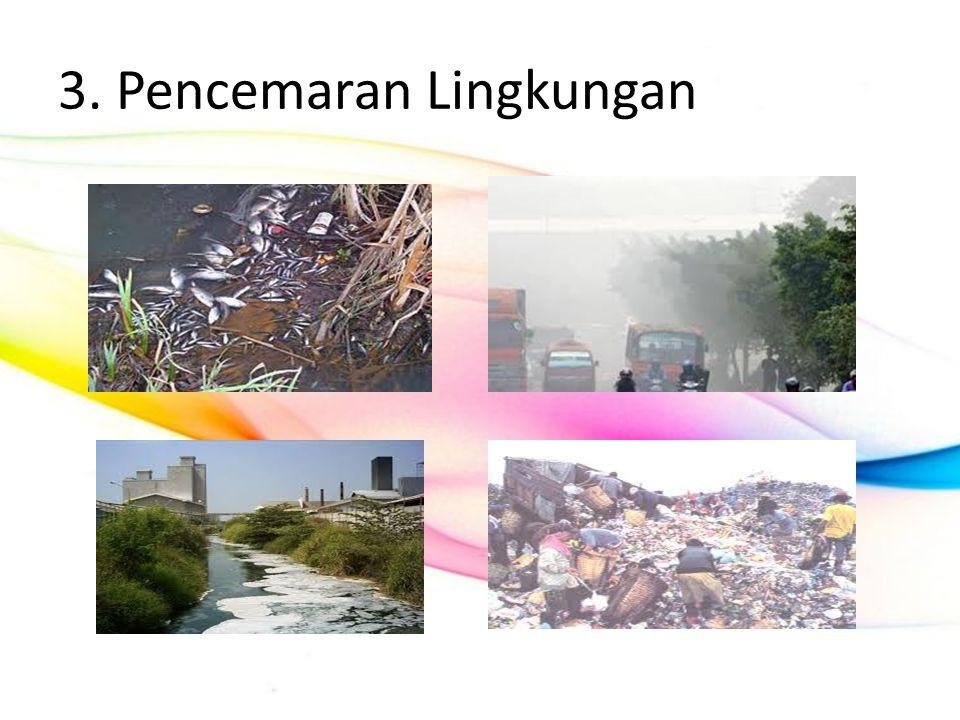 3. Pencemaran Lingkungan
