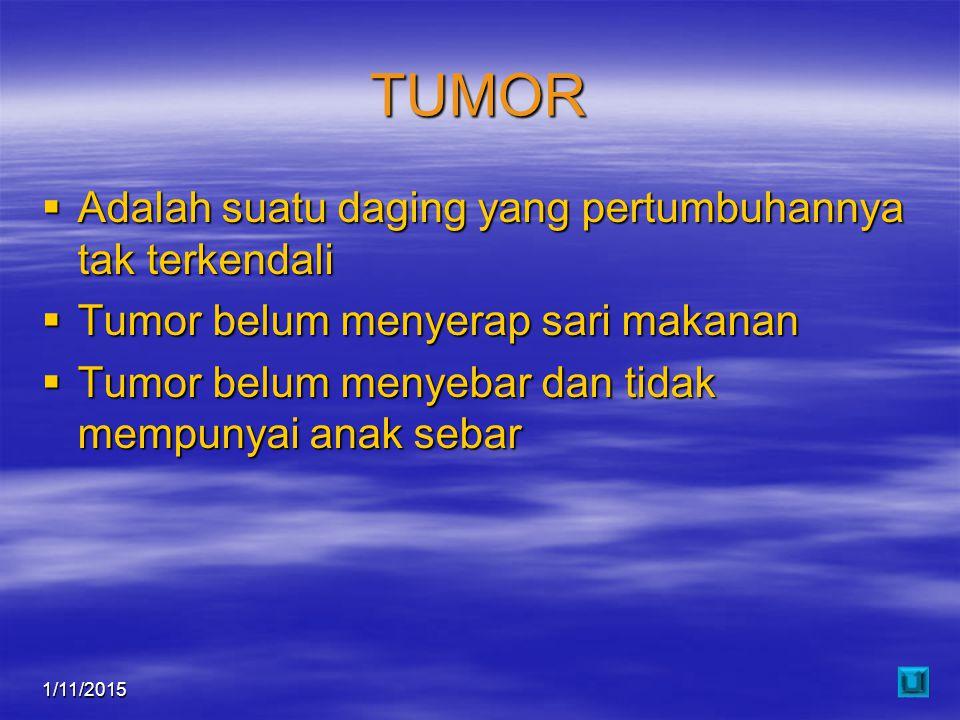 1/11/201511 TUMOR  Adalah suatu daging yang pertumbuhannya tak terkendali  Tumor belum menyerap sari makanan  Tumor belum menyebar dan tidak mempun