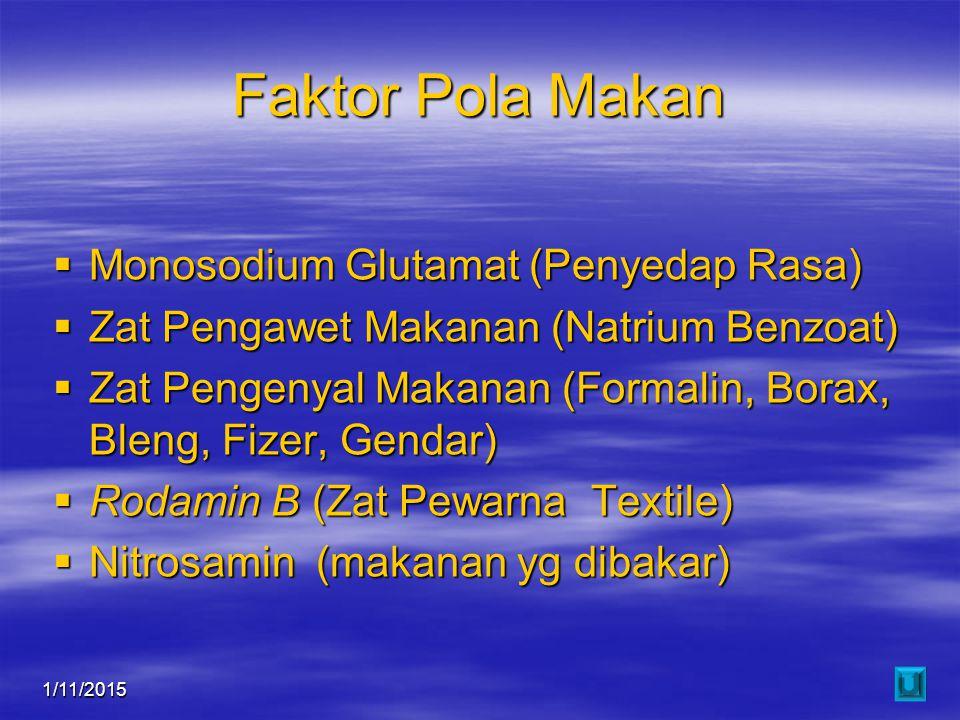 1/11/201517 Faktor Pola Makan  Monosodium Glutamat (Penyedap Rasa)  Zat Pengawet Makanan (Natrium Benzoat)  Zat Pengenyal Makanan (Formalin, Borax,