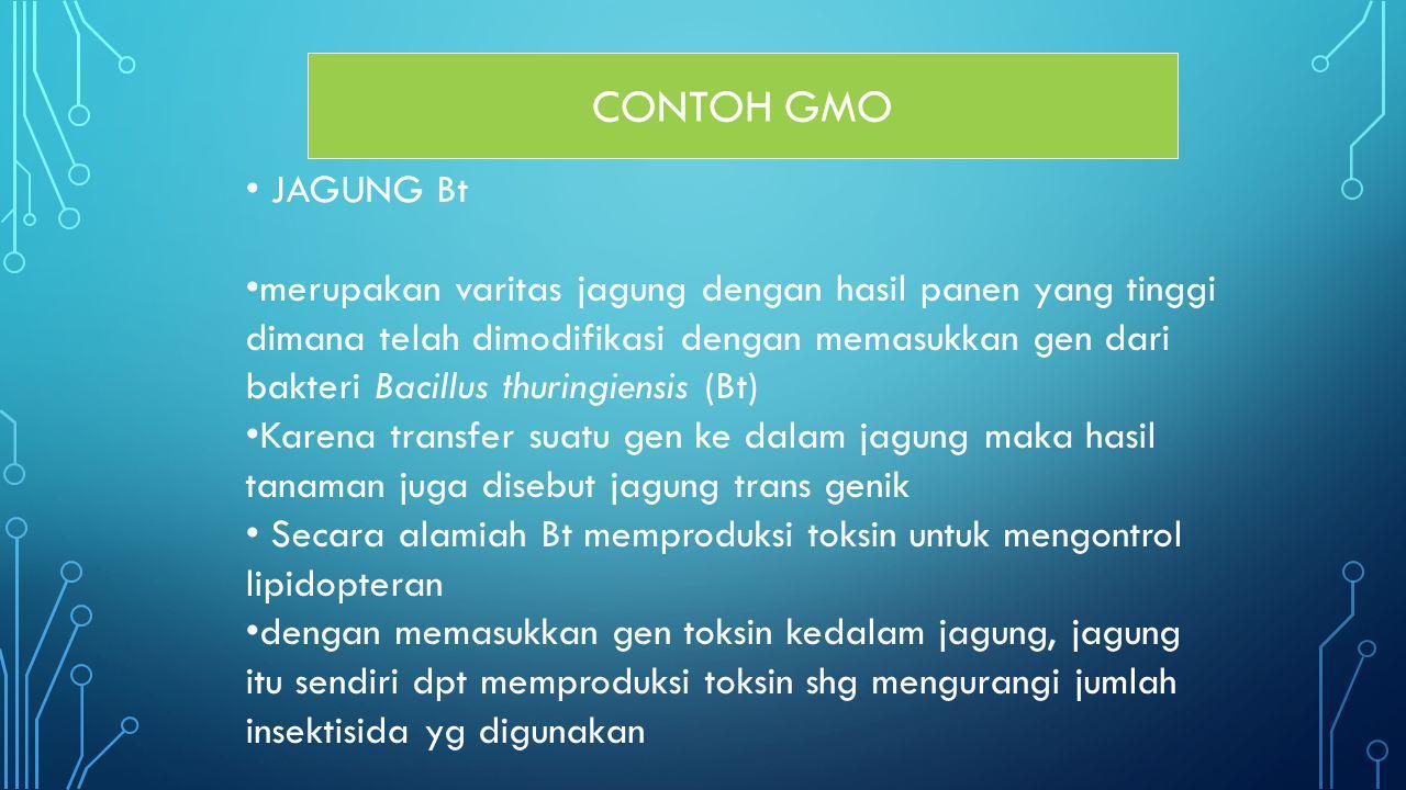 CONTOH GMO JAGUNG Bt merupakan varitas jagung dengan hasil panen yang tinggi dimana telah dimodifikasi dengan memasukkan gen dari bakteri Bacillus thu