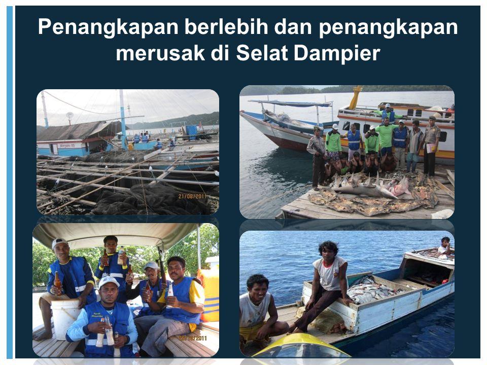 Penangkapan berlebih dan penangkapan merusak di Selat Dampier
