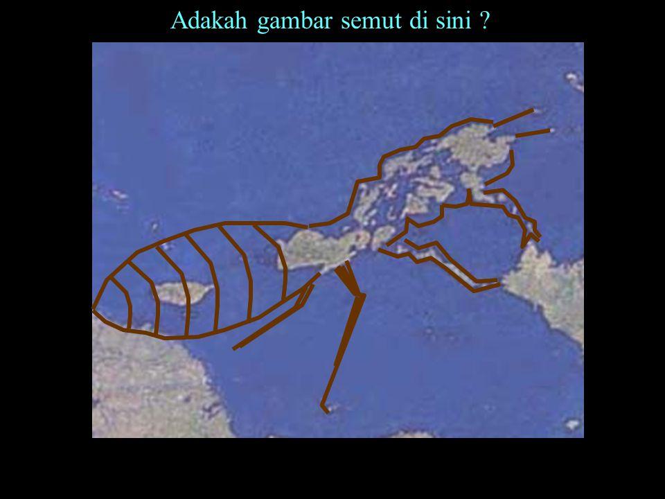 Nama: Semut Ukuran 80 cm x 70 xm Cat minyak di atas kanvas Kawasan Philippina Pelukis Fahmi Basya Berkata seekor semut: Hai semut-semut, masuklah ke tempat- tempat kediaman kamu agar tidak diinjak-injak kamu oleh Sulaiman dan tentaranya dalam keadaan mereka tidak sadar (Al-Quran, surat Semut, ke 27 ayat 18) One of the ants said: O ye ants, get into your habitations, lest Solomon and his hosts crush you (under foot) without knowing it. (Al-Quran, surat Semut, ke 27 ayat 18)