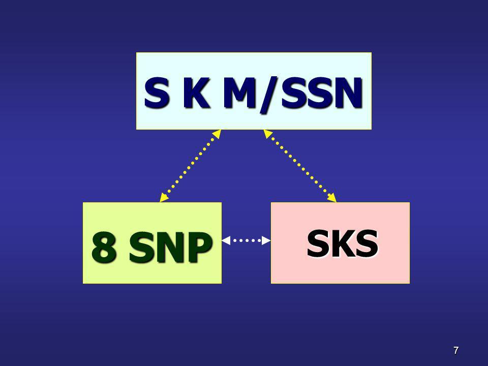 7 S K M/SSN 8 SNP SKS SKS