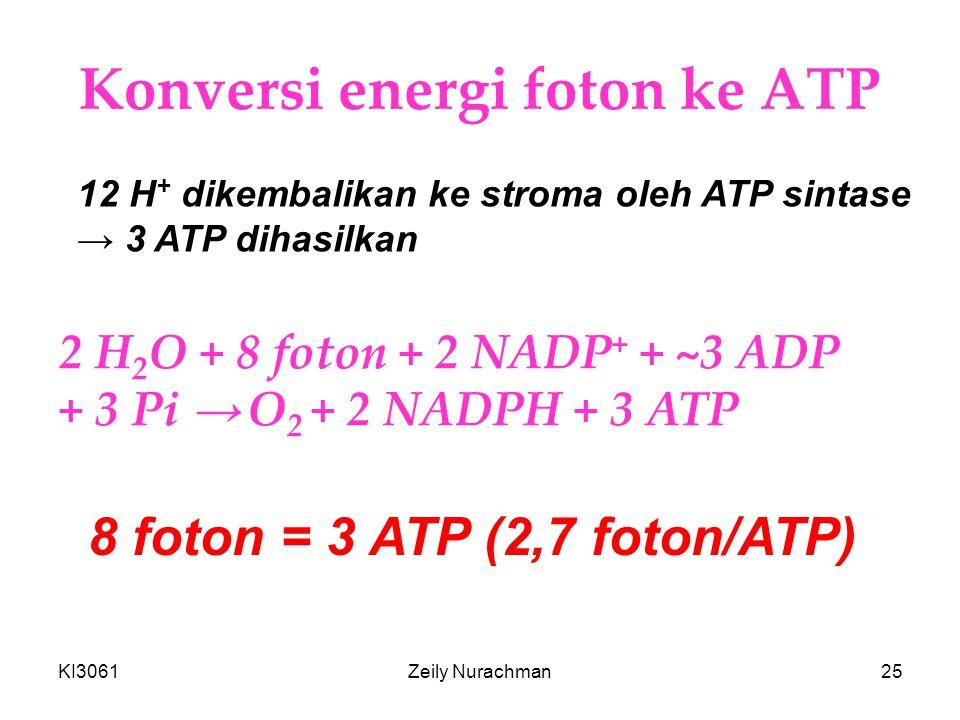 KI3061Zeily Nurachman25 Konversi energi foton ke ATP 12 H + dikembalikan ke stroma oleh ATP sintase → 3 ATP dihasilkan 2 H 2 O + 8 foton + 2 NADP + + ~3 ADP + 3 Pi → O 2 + 2 NADPH + 3 ATP 8 foton = 3 ATP (2,7 foton/ATP)