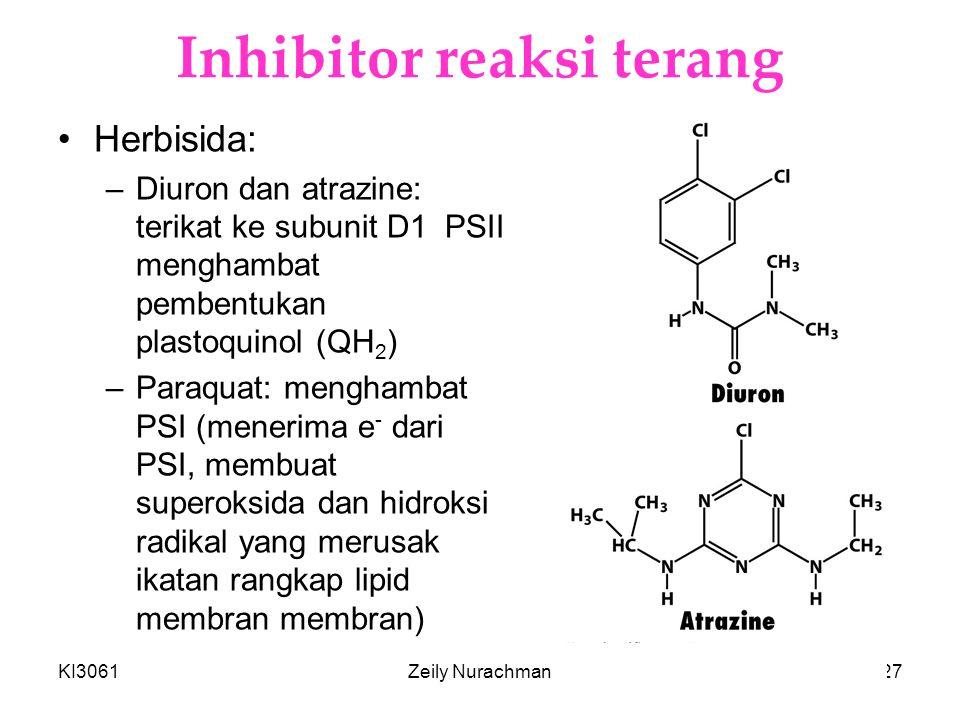 KI3061Zeily Nurachman27 Inhibitor reaksi terang Herbisida: –Diuron dan atrazine: terikat ke subunit D1 PSII menghambat pembentukan plastoquinol (QH 2 ) –Paraquat: menghambat PSI (menerima e - dari PSI, membuat superoksida dan hidroksi radikal yang merusak ikatan rangkap lipid membran membran)