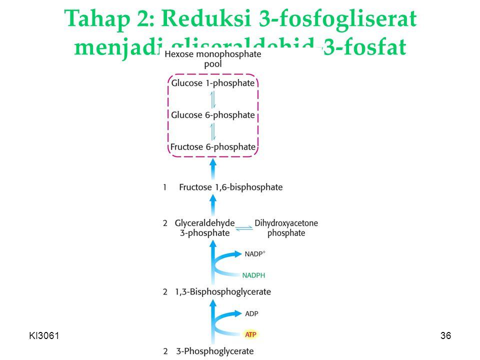 KI3061Zeily Nurachman36 Tahap 2: Reduksi 3-fosfogliserat menjadi gliseraldehid-3-fosfat