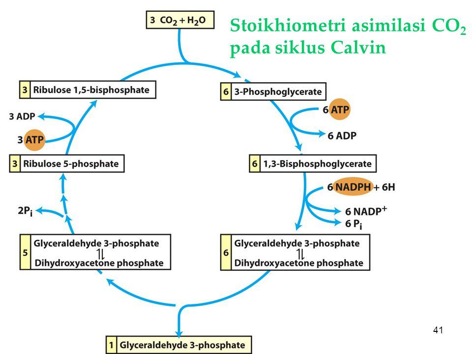 KI3061Zeily Nurachman41 Stoikhiometri asimilasi CO 2 pada siklus Calvin