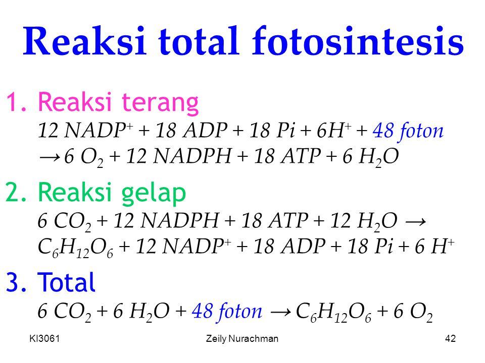 KI3061Zeily Nurachman42 Reaksi total fotosintesis 1.Reaksi terang 12 NADP + + 18 ADP + 18 Pi + 6H + + 48 foton → 6 O 2 + 12 NADPH + 18 ATP + 6 H 2 O 2.Reaksi gelap 6 CO 2 + 12 NADPH + 18 ATP + 12 H 2 O → C 6 H 12 O 6 + 12 NADP + + 18 ADP + 18 Pi + 6 H + 3.Total 6 CO 2 + 6 H 2 O + 48 foton → C 6 H 12 O 6 + 6 O 2