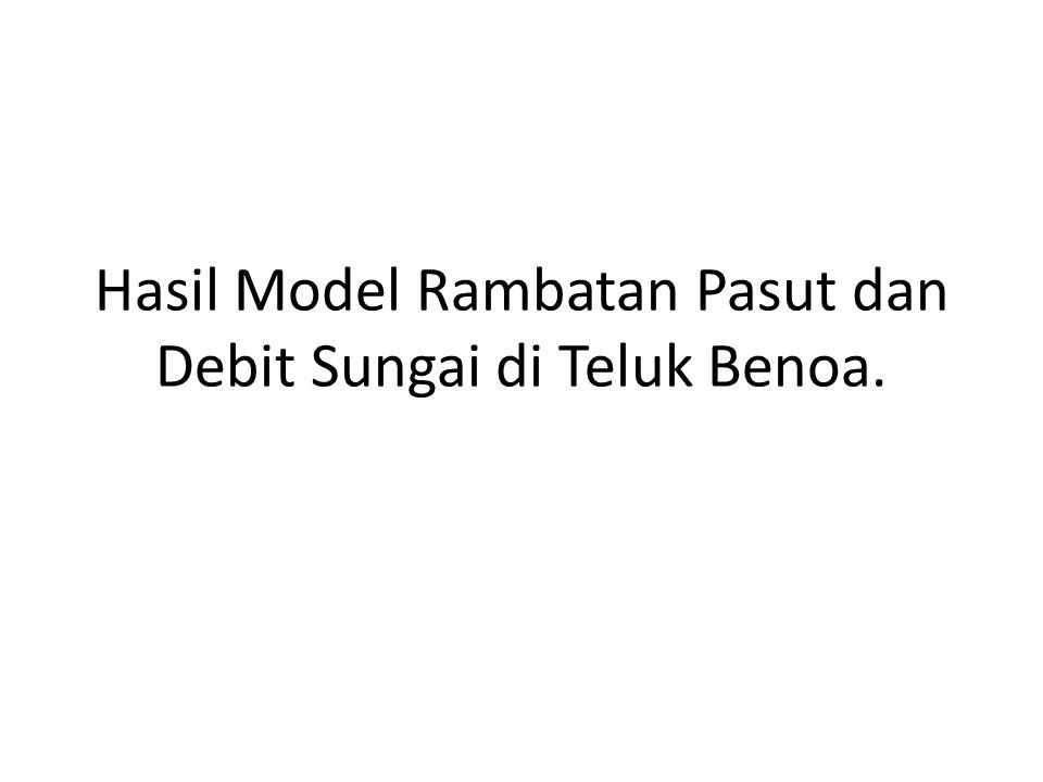 Hasil Model Rambatan Pasut dan Debit Sungai di Teluk Benoa.