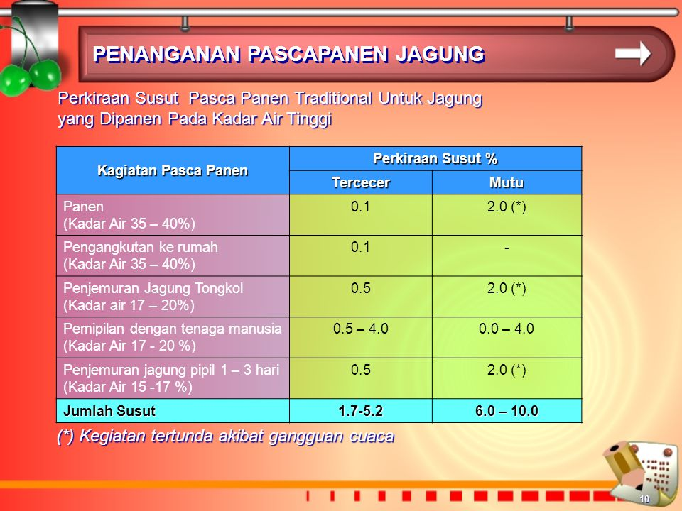 10 PENANGANAN PASCAPANEN JAGUNG Perkiraan Susut Pasca Panen Traditional Untuk Jagung yang Dipanen Pada Kadar Air Tinggi Kagiatan Pasca Panen Perkiraan Susut % TercecerMutu Panen (Kadar Air 35 – 40%) 0.12.0 (*) Pengangkutan ke rumah (Kadar Air 35 – 40%) 0.1- Penjemuran Jagung Tongkol (Kadar air 17 – 20%) 0.52.0 (*) Pemipilan dengan tenaga manusia (Kadar Air 17 - 20 %) 0.5 – 4.00.0 – 4.0 Penjemuran jagung pipil 1 – 3 hari (Kadar Air 15 -17 %) 0.52.0 (*) Jumlah Susut 1.7-5.2 6.0 – 10.0 (*) Kegiatan tertunda akibat gangguan cuaca