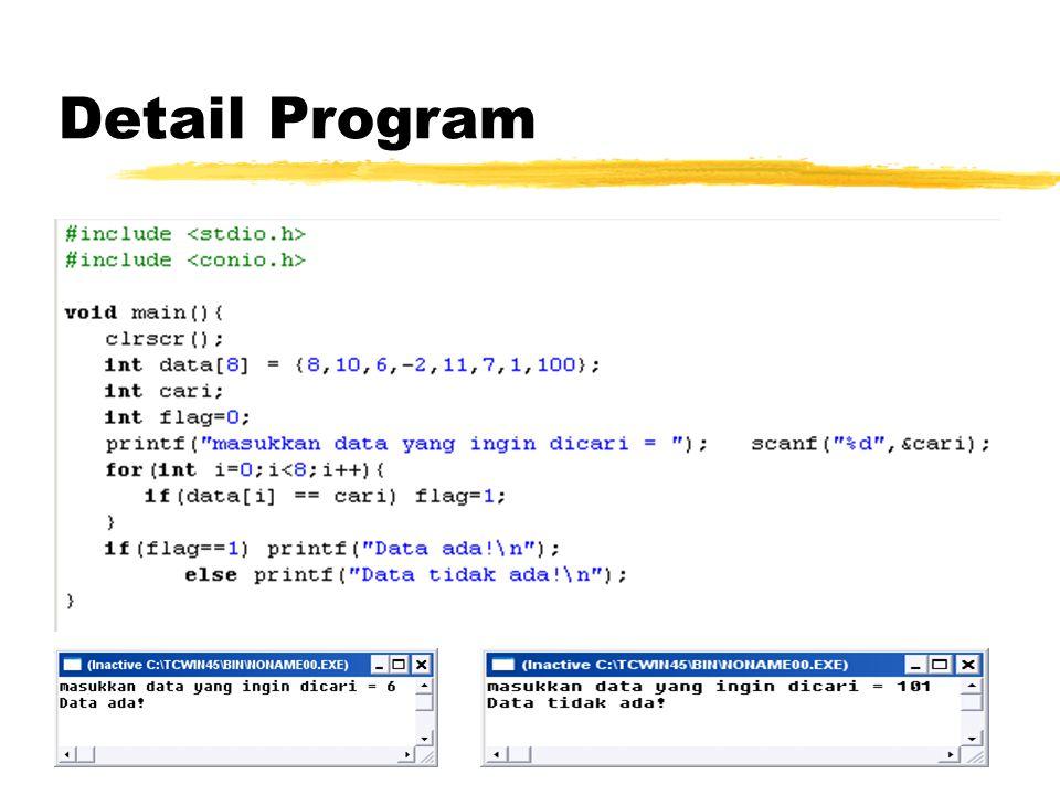 Detail Program