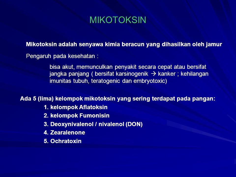 MIKOTOKSIN Mikotoksin adalah senyawa kimia beracun yang dihasilkan oleh jamur Pengaruh pada kesehatan : bisa akut, memunculkan penyakit secara cepat atau bersifat jangka panjang ( bersifat karsinogenik  kanker ; kehilangan imunitas tubuh, teratogenic dan embryotoxic) Ada 5 (lima) kelompok mikotoksin yang sering terdapat pada pangan: 1.