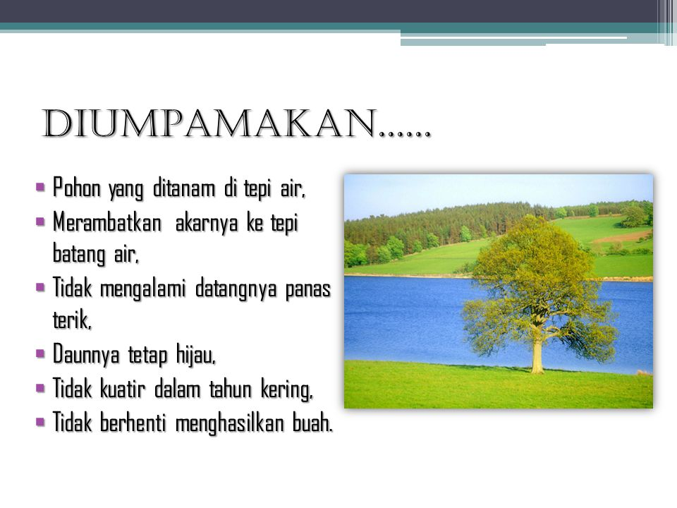 DIUMPAMAKAN......  Pohon yang ditanam di tepi air,  Merambatkan akarnya ke tepi batang air,  Tidak mengalami datangnya panas terik,  Daunnya tetap