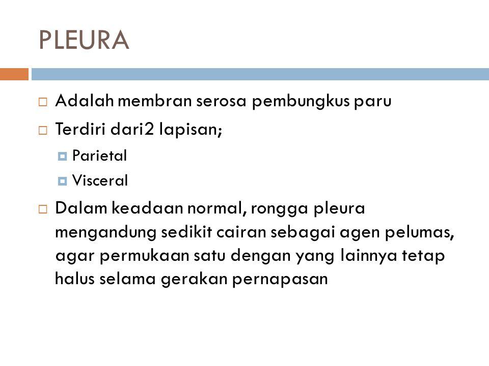 PLEURA  Adalah membran serosa pembungkus paru  Terdiri dari2 lapisan;  Parietal  Visceral  Dalam keadaan normal, rongga pleura mengandung sedikit