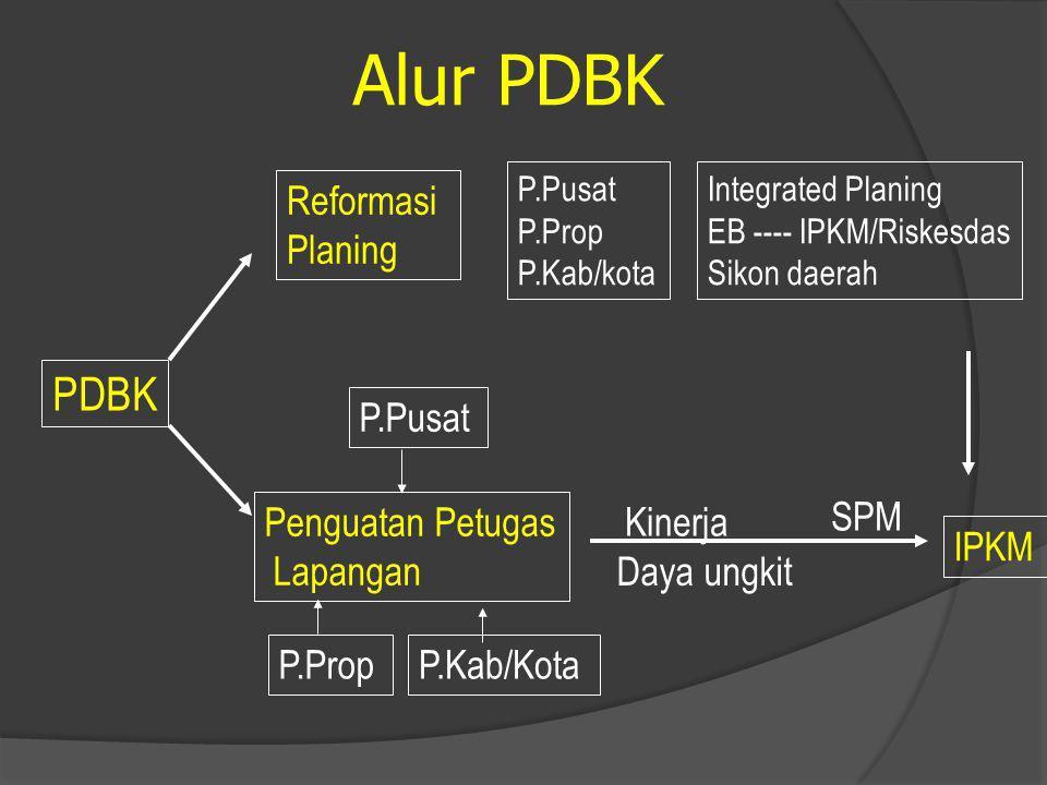 PDBK Reformasi Planing Penguatan Petugas Lapangan P.Pusat P.PropP.Kab/Kota IPKM Kinerja Daya ungkit SPM P.Pusat P.Prop P.Kab/kota Integrated Planing EB ---- IPKM/Riskesdas Sikon daerah Alur PDBK
