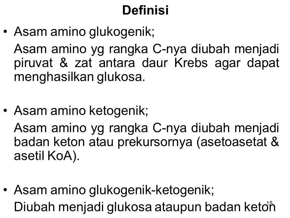 15 Definisi Asam amino glukogenik; Asam amino yg rangka C-nya diubah menjadi piruvat & zat antara daur Krebs agar dapat menghasilkan glukosa. Asam ami
