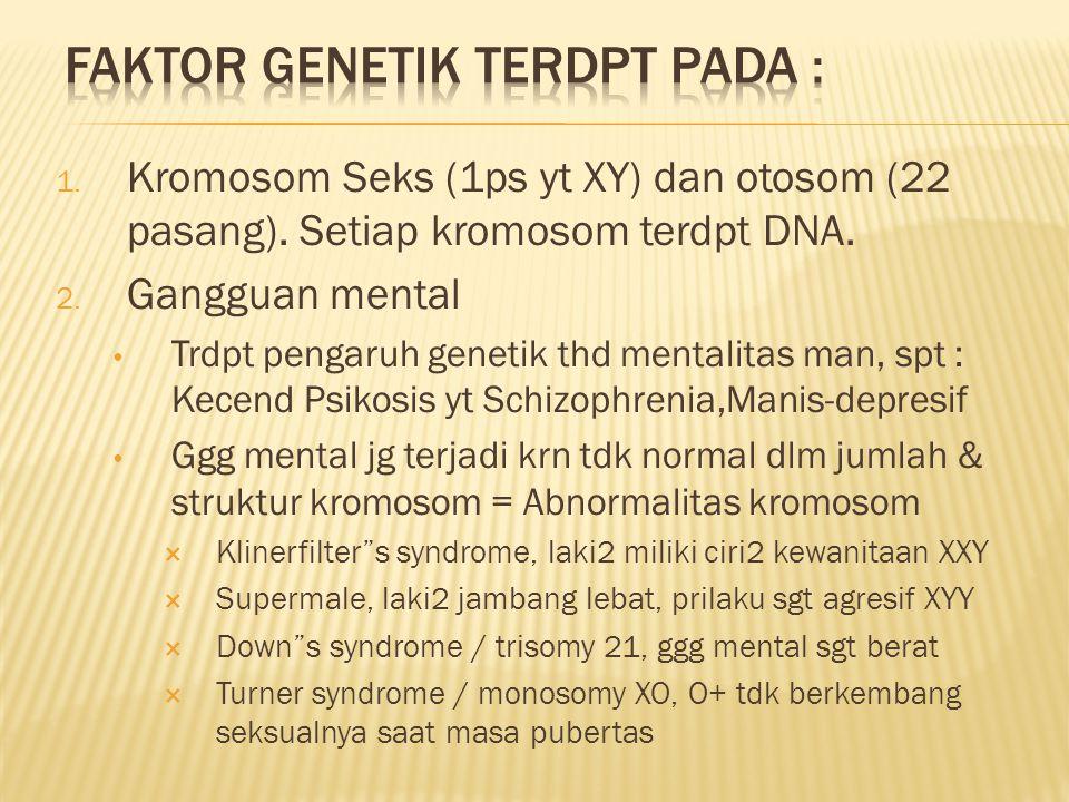 1. Kromosom Seks (1ps yt XY) dan otosom (22 pasang).