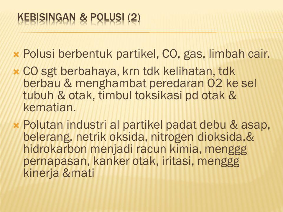  Polusi berbentuk partikel, CO, gas, limbah cair.