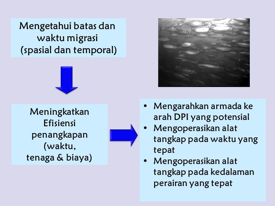 Mengetahui batas dan waktu migrasi (spasial dan temporal) Meningkatkan Efisiensi penangkapan (waktu, tenaga & biaya) Mengarahkan armada ke arah DPI ya
