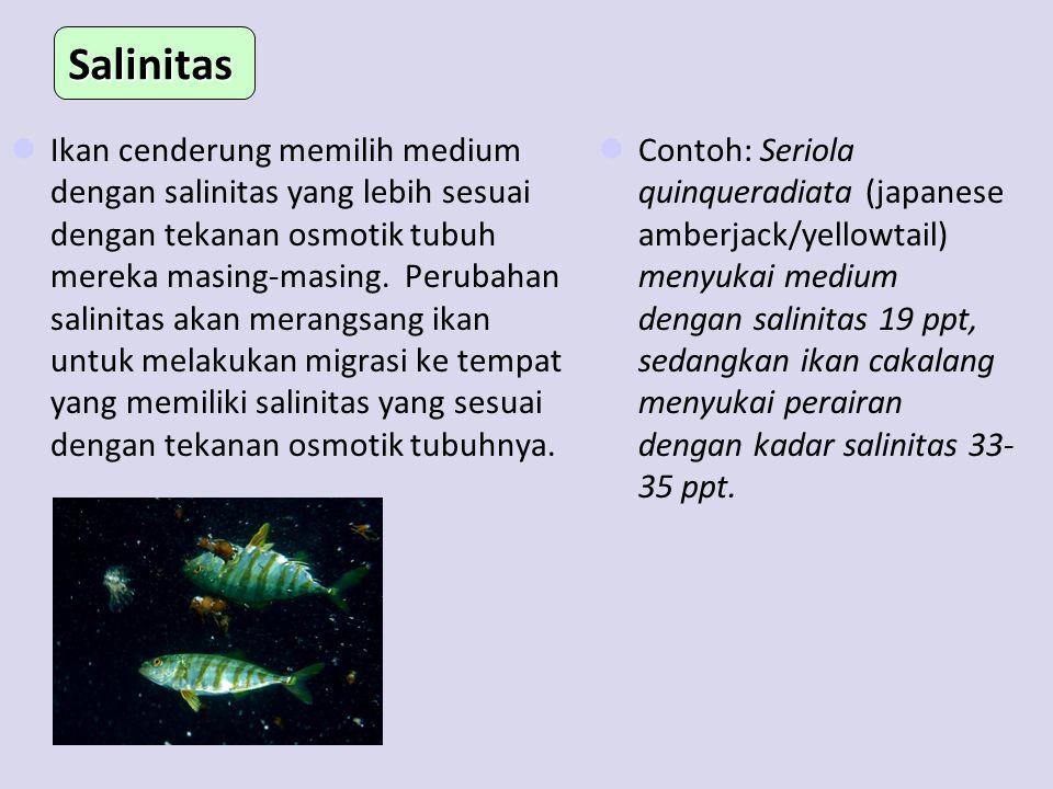 Ikan cenderung memilih medium dengan salinitas yang lebih sesuai dengan tekanan osmotik tubuh mereka masing-masing. Perubahan salinitas akan merangsan