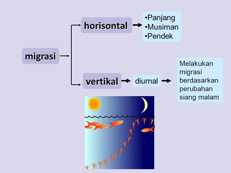 migrasi horisontal vertikal Panjang Musiman Pendek diurnal Melakukan migrasi berdasarkan perubahan siang malam