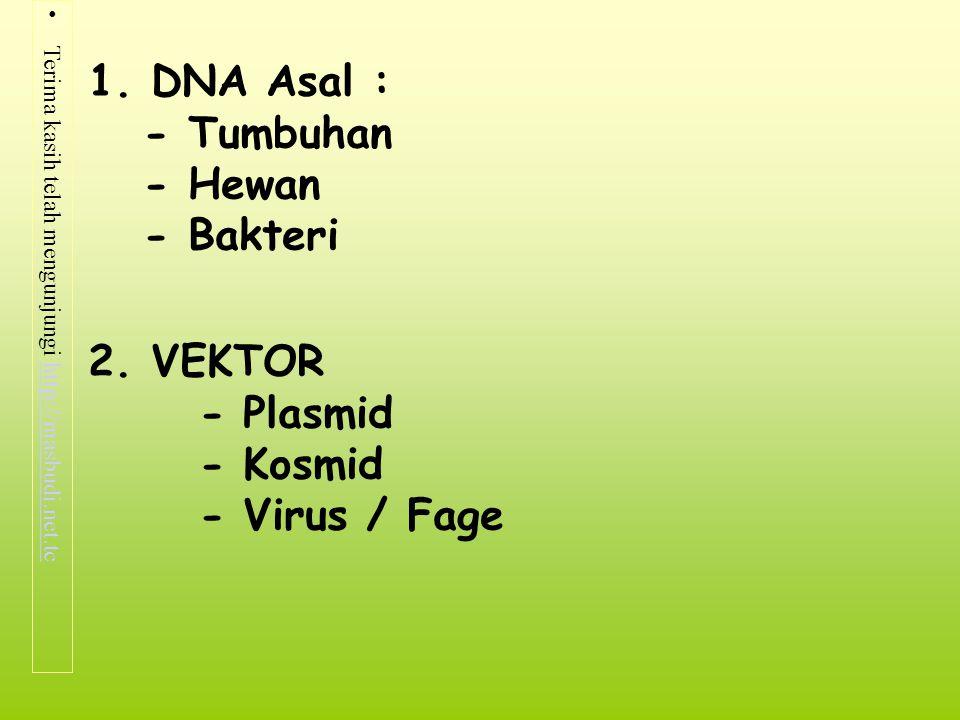 Terima kasih telah mengunjungi http://masbudi.net.tchttp://masbudi.net.tc 1. DNA Asal : - Tumbuhan - Hewan - Bakteri 2. VEKTOR - Plasmid - Kosmid - Vi