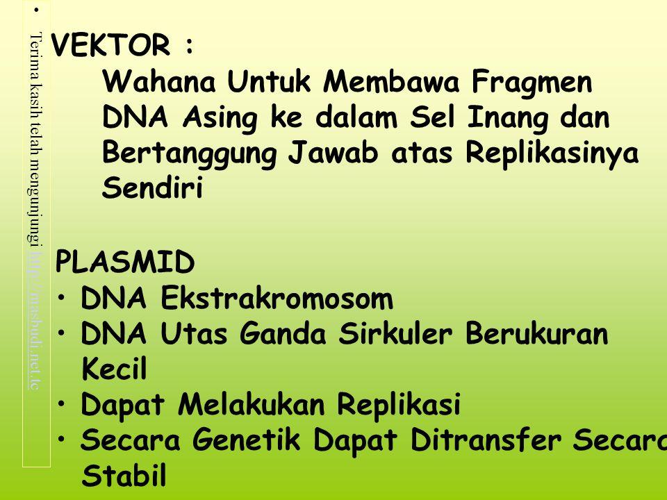 Terima kasih telah mengunjungi http://masbudi.net.tchttp://masbudi.net.tc MACAM PLASMID : Plasmid F (Fertilitas) membawa gen tra Plasmid R (resistensi) Plasmid Col (toksin ) Plasmid Tol (degradatif) Plamid Virulensi (pTi)