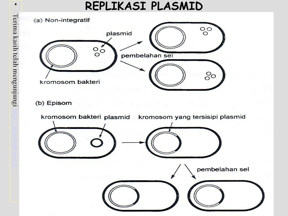 Terima kasih telah mengunjungi http://masbudi.net.tchttp://masbudi.net.tc FAGE / BAKTERIOFAGE Virus Yang Menginfeksi Bakteri FAGE MEMPUNYAI 2 SIKLUS HIDUP : - Siklus Litik - Siklus Lisogenik FAGE YANG DIGUNAKAN DALAM KLON GEN - Fage - M13