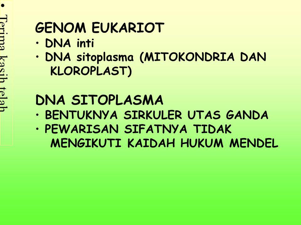 Terima kasih telah mengunjungi http://masbudi.net.tc http://masbudi.net.tc GENOM EUKARIOT DNA inti DNA sitoplasma (MITOKONDRIA DAN KLOROPLAST) DNA SITOPLASMA BENTUKNYA SIRKULER UTAS GANDA PEWARISAN SIFATNYA TIDAK MENGIKUTI KAIDAH HUKUM MENDEL