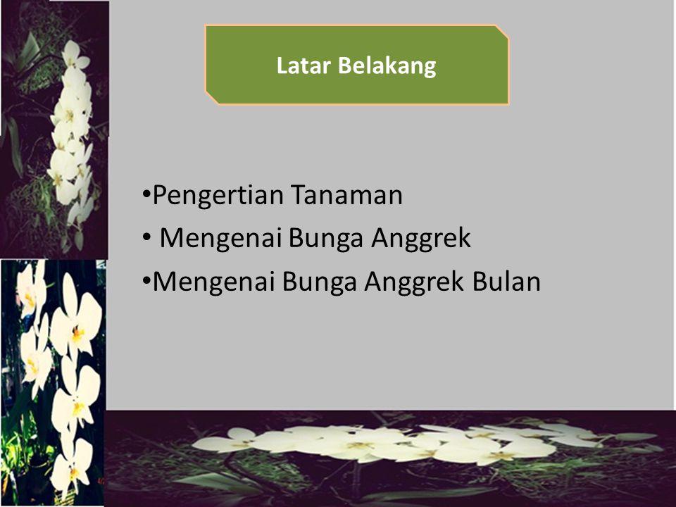 1.Mengetahui cara membudidayakan Bunga Anggrek Bulan 2.