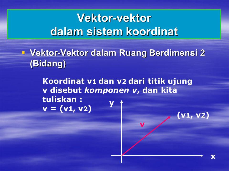 Vektor-vektor dalam sistem koordinat  Vektor-Vektor dalam Ruang Berdimensi 2 (Bidang) Koordinat v 1 dan v 2 dari titik ujung v disebut komponen v, da