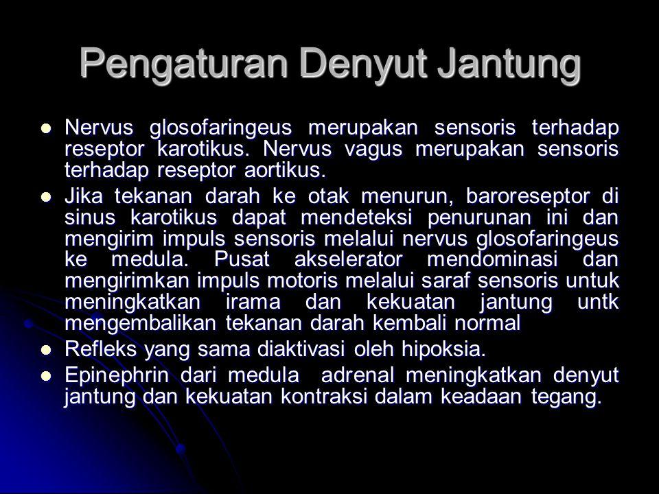 Nervus glosofaringeus merupakan sensoris terhadap reseptor karotikus. Nervus vagus merupakan sensoris terhadap reseptor aortikus. Nervus glosofaringeu