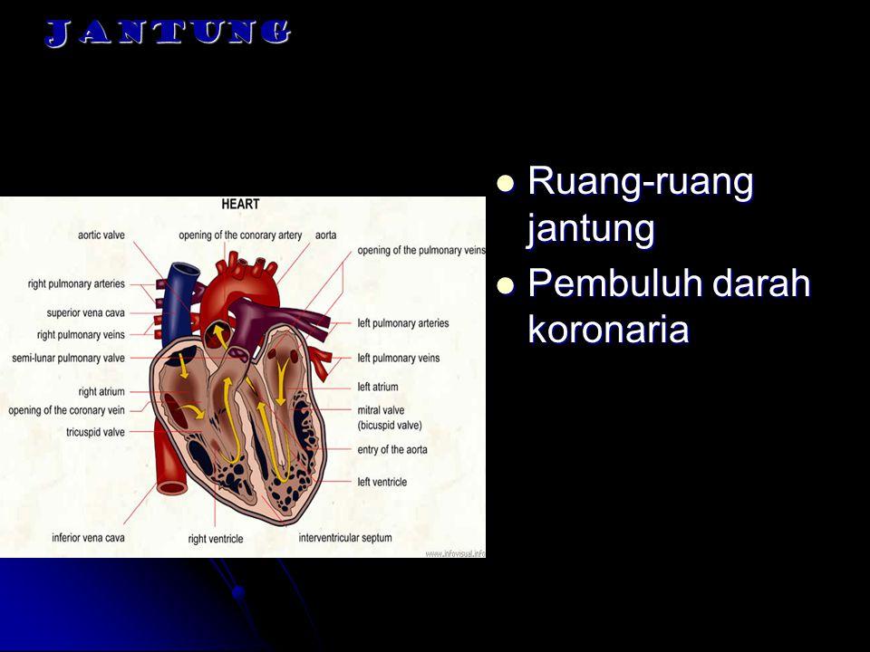 SIKLUS DAN BUNYI JANTUNG Siklus jantung : Rangkaian kejadian dalam satu irama jantung Rangkaian kejadian dalam satu irama jantung Kontraksi bersamaan kedua atrium Kontraksi bersamaan kedua atrium Rangkaian peristiwa mekanik yang diatur oleh aktivitas listrik miokardium Rangkaian peristiwa mekanik yang diatur oleh aktivitas listrik miokardium Rangkaian kejadian yang mempertahankan pergerakan darah dari vena, melalui jantung,dan masuk ke arteri Rangkaian kejadian yang mempertahankan pergerakan darah dari vena, melalui jantung,dan masuk ke arteri