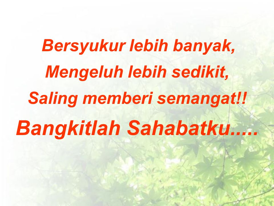 Bersyukur lebih banyak, Mengeluh lebih sedikit, Saling memberi semangat!! Bangkitlah Sahabatku.....