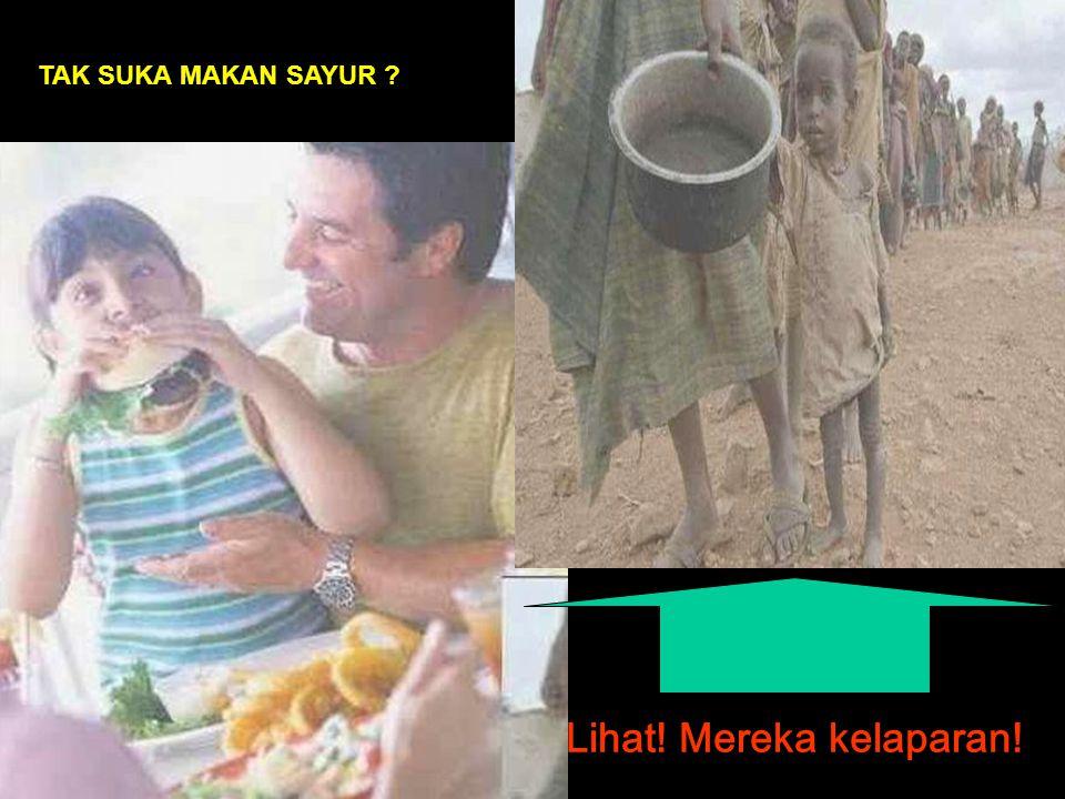 Lihat! Mereka kelaparan! TAK SUKA MAKAN SAYUR ?