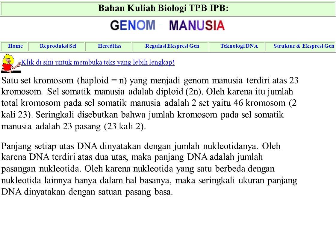 Bahan Kuliah Biologi TPB IPB: - HomeReproduksi SelHereditasRegulasi Ekspresi GenTeknologi DNAStruktur & Ekspresi Gen Klik di sini untuk membuka teks y
