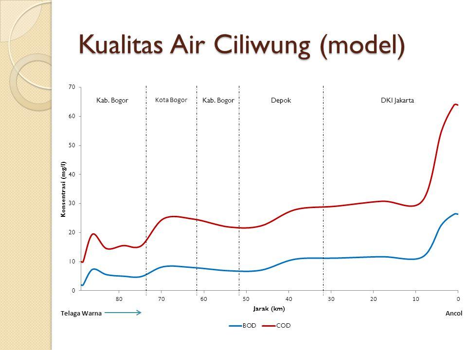 Kualitas Air Ciliwung (model)