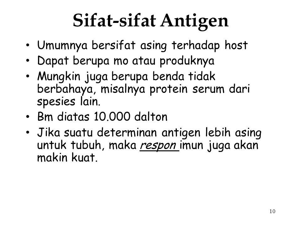 9 Allo antigen : antigen yang terdapat pada individu tertentu dan ternyata dapat menimbulkan antibodi pada individu lainnya dalam satu spesies, karena