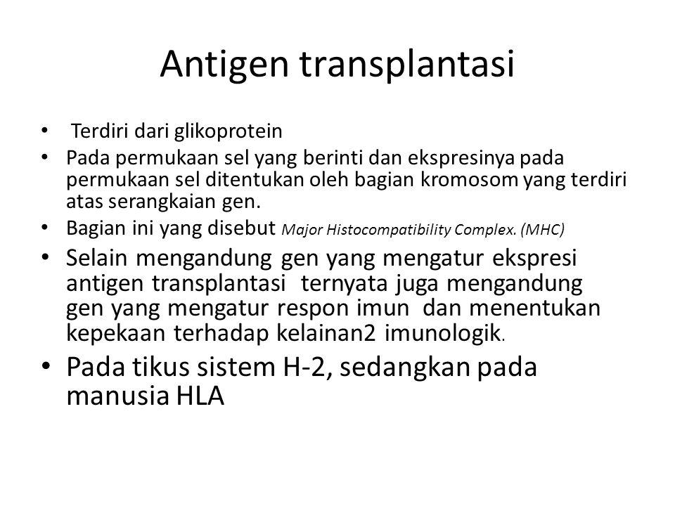 Major Histocompatibility Complex (MHC) Pertama kali terungkap pada pertengahan tahun1950 Serum penderita transfusi darah ada antibodi yang dapat mengg