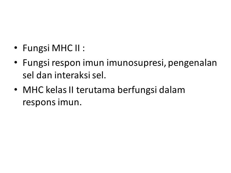 MHC II Antigen MHC kelas II terutama dijumpai pada permukaan sel-sel imunokompeten.( makrofag, /monosit, limfosit B,limfosit T teraktivasi) Limfosit T