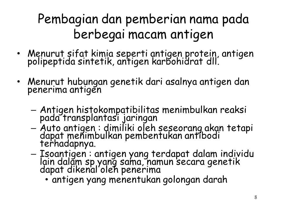 7 Antigen dapat dibagi menjadi 2 golongan : – Antigen eksogen: yang berasal dari luar tubuh seseorang ( bakteri, virus, obat ). – Antigen endogen yang