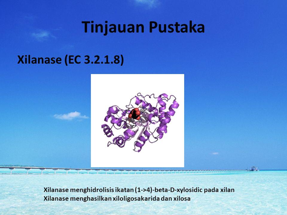 Tinjauan Pustaka Xilanase (EC 3.2.1.8) Xilanase menghidrolisis ikatan (1->4)-beta-D-xylosidic pada xilan Xilanase menghasilkan xiloligosakarida dan xi