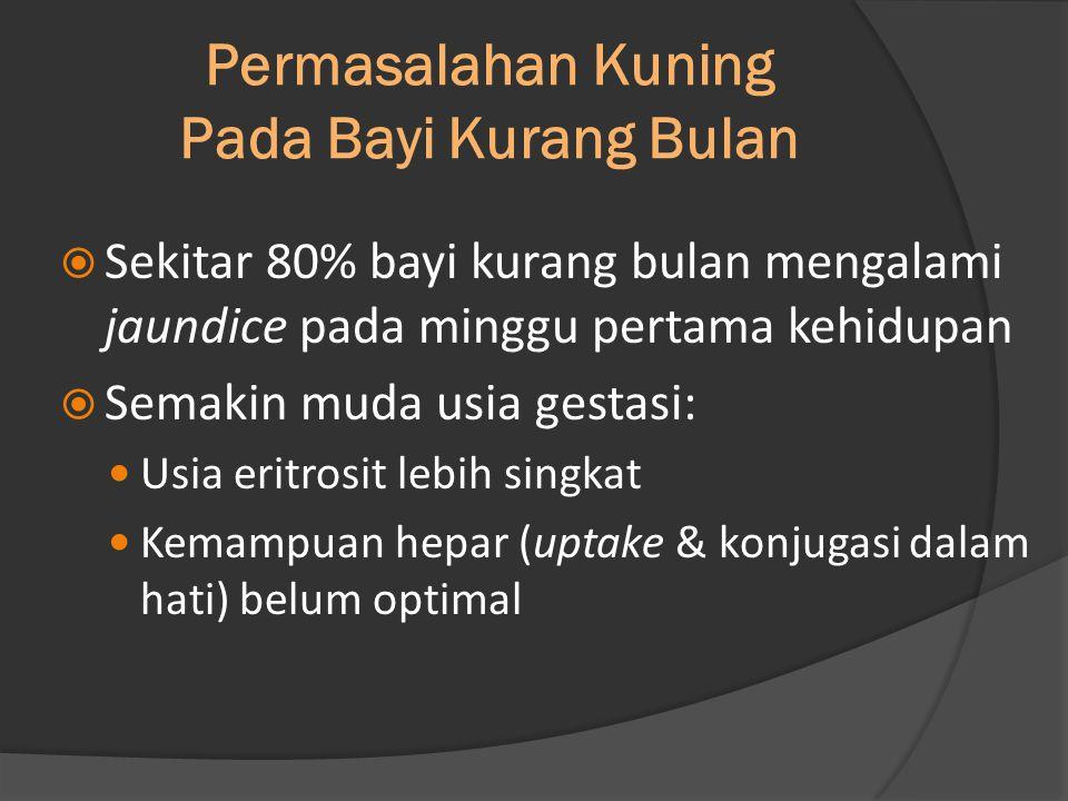 Permasalahan Kuning Pada Bayi Kurang Bulan… (sambungan)  Memerlukan lebih banyak waktu untuk menghilang sampai dengan 2 minggu Ikatan Dokter Anak Indonesia (IDAI).