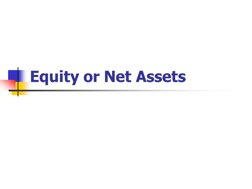 Equity or Net Assets