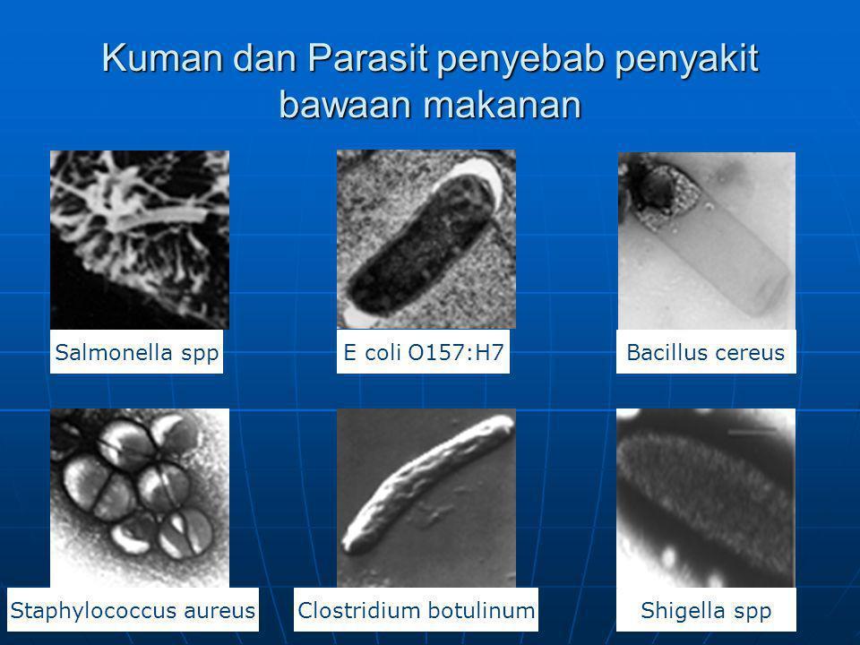 Kuman dan Parasit penyebab penyakit bawaan makanan Bacillus cereusE coli O157:H7Salmonella spp Staphylococcus aureusClostridium botulinumShigella spp
