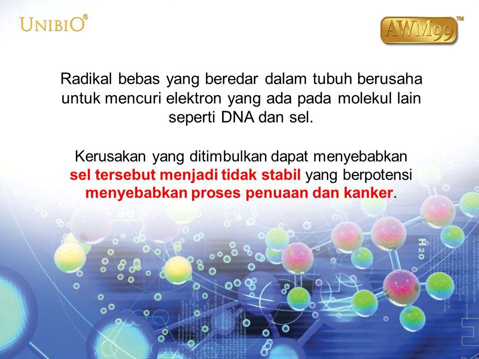 Radikal bebas yang beredar dalam tubuh berusaha untuk mencuri elektron yang ada pada molekul lain seperti DNA dan sel. Kerusakan yang ditimbulkan dapa