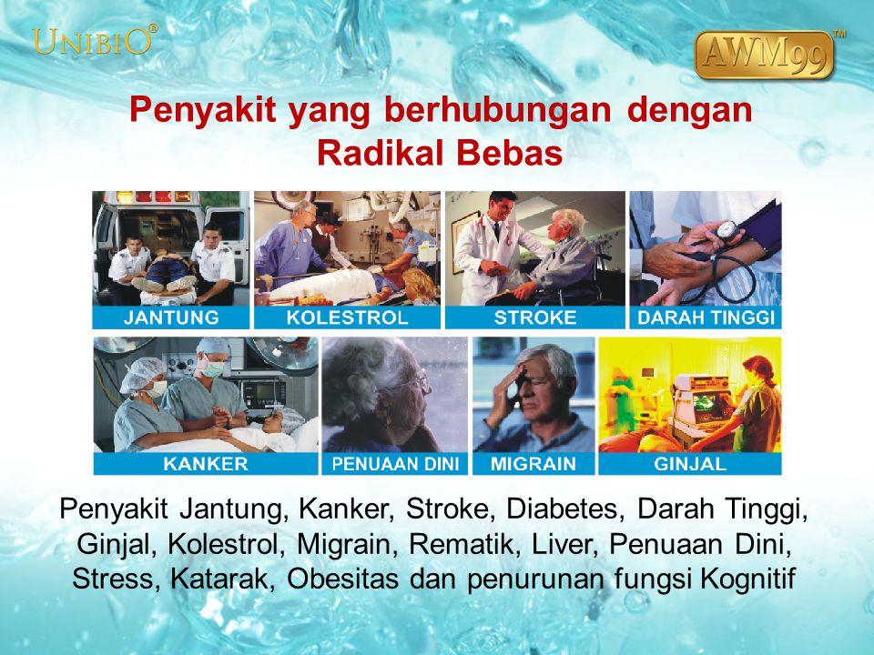 Penyakit yang berhubungan dengan Radikal Bebas Penyakit Jantung, Kanker, Stroke, Diabetes, Darah Tinggi, Ginjal, Kolestrol, Migrain, Rematik, Liver, P
