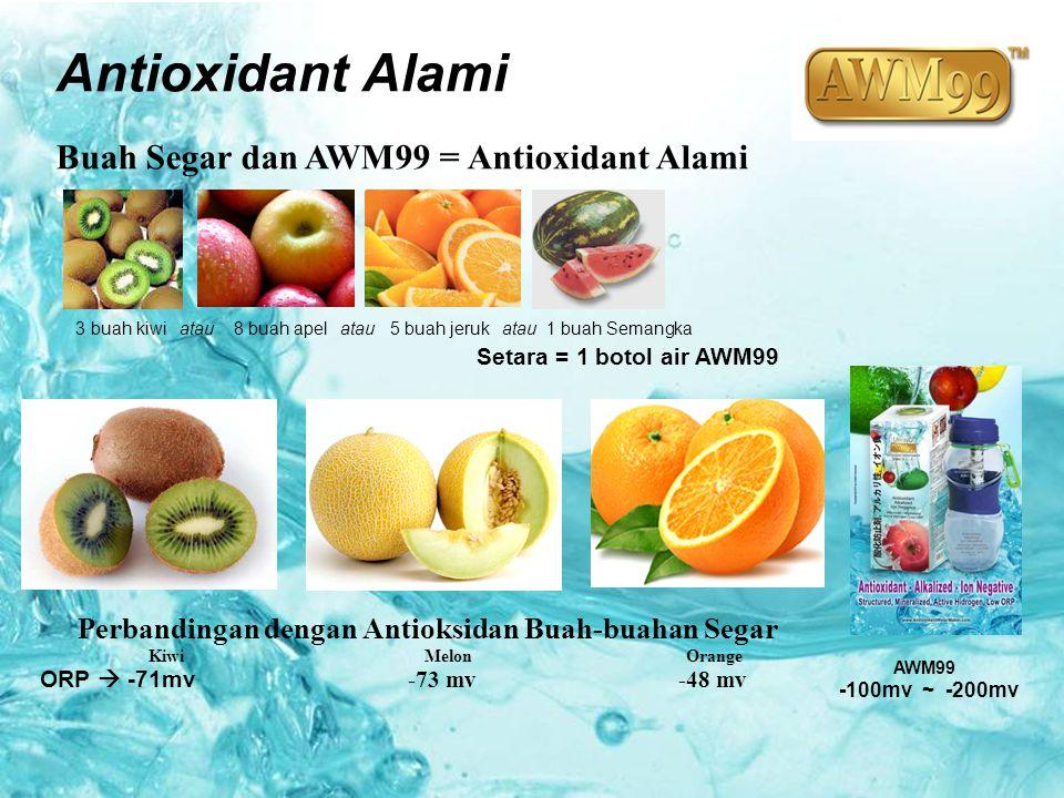 Antioxidant Alami Buah Segar dan AWM99 = Antioxidant Alami 3 buah kiwi atau 8 buah apel atau 5 buah jeruk atau 1 buah Semangka Setara = 1 botol air AW