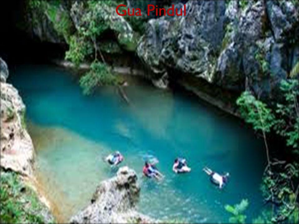 Gua Pindul memiliki panjang sekitar 350 m, lebar hingga 5 m, jarak permukaan air dengan atap gua 4 m, dan kedalaman air sekitar 5-12 m.