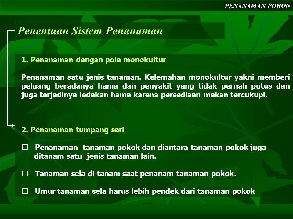 PENANAMAN POHON Penentuan Sistem Penanaman 1.